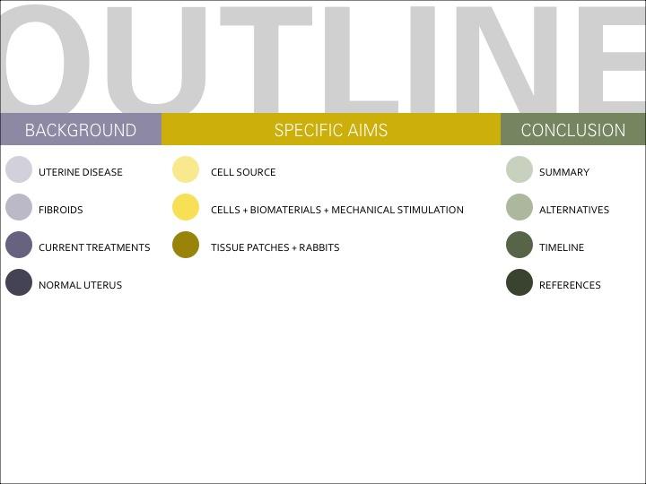 Uterine Tissue Engineering_2b